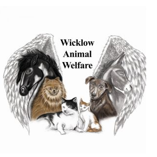 Wicklow Animal Welfare